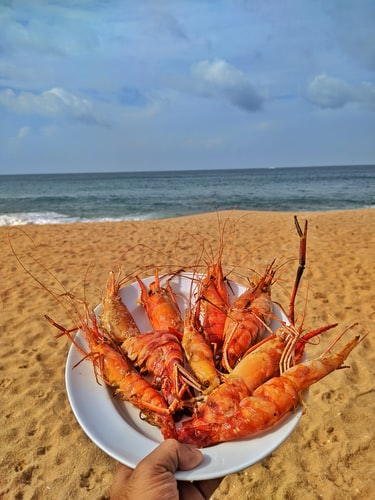 Portugal food at the beach
